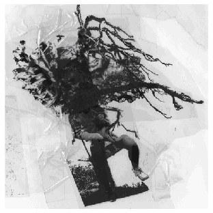 harald grosskopf - synthesist / re-synthesist 2014年9月6日 クラウトロック~コスミッシェ・ムジークの巨人harald grosskopf 古くはash ra  tempel  ニューエイジ~ミニマル~ダンスファンに、synthesistと合わせて大推薦です  1986年作品  求めになっています。 synthesist / re-synthesist.