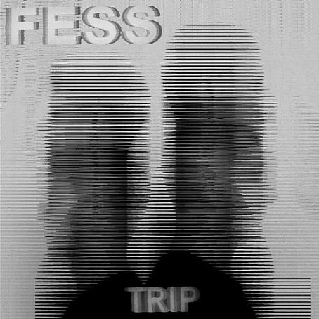 FESS - Travels