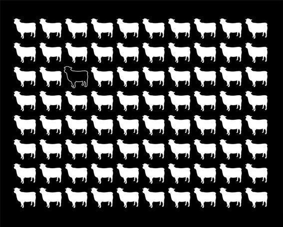 Black sheep effect   Psychology Wiki   FANDOM powered by Wikia