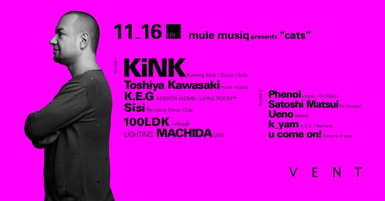 "KiNK at Mule Musiq presents ""cats"""