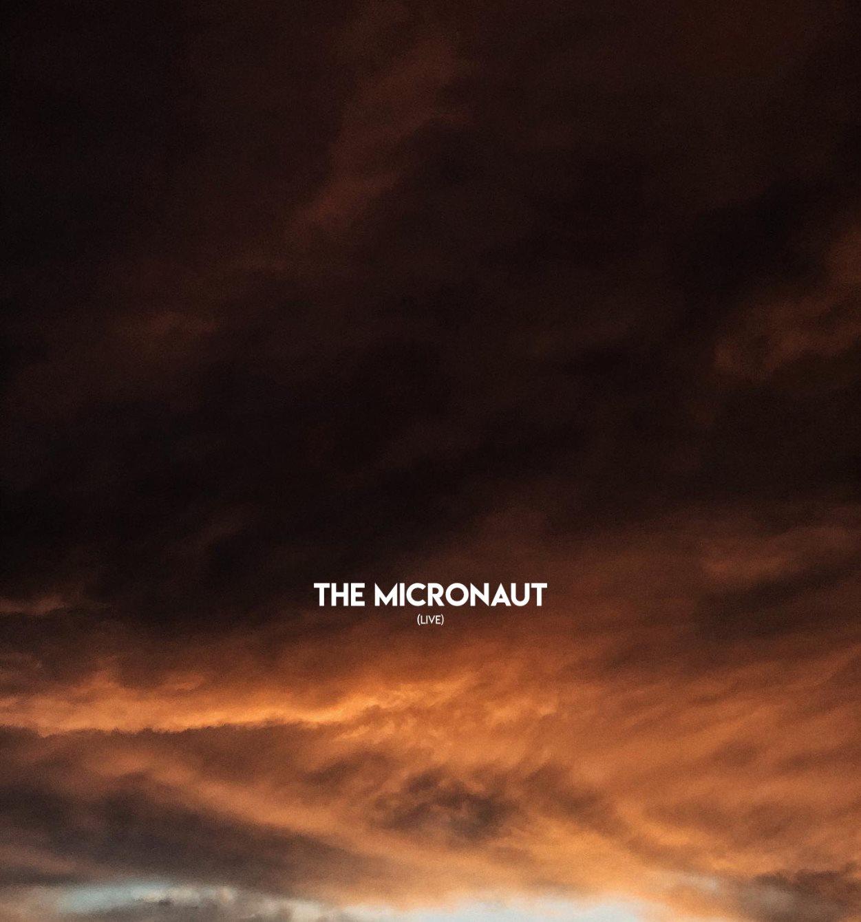 The Micronaut