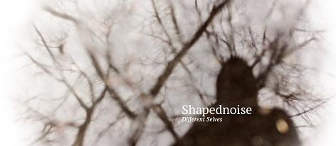 Shapednoise: Different selves