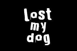 Tracks on Lost My Dog