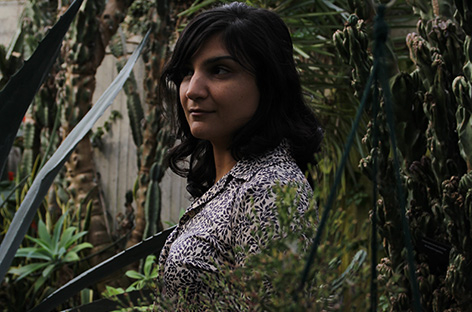 d69a22a7af Two Sarah Davachi albums on the way