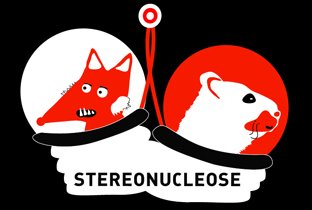 Stereonucleose