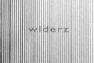 The Welderz