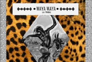 Download Waya Waya songs
