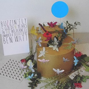 Various Artists - Buzzin' Fly - 5 Golden Years in the Wilderness