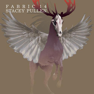 Stacey Pullen - Fabric 14