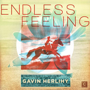 Gavin Herlihy - Endless Feeling