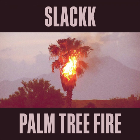 Slackk - Palm Tree Fire