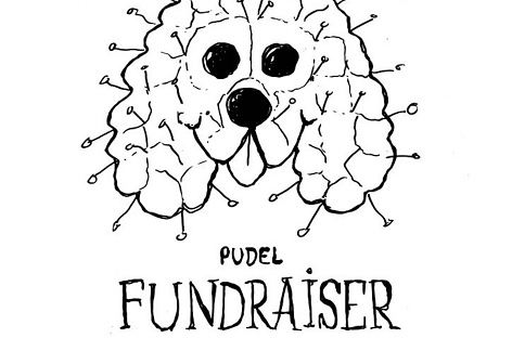 Golden Pudel fundraiser in London