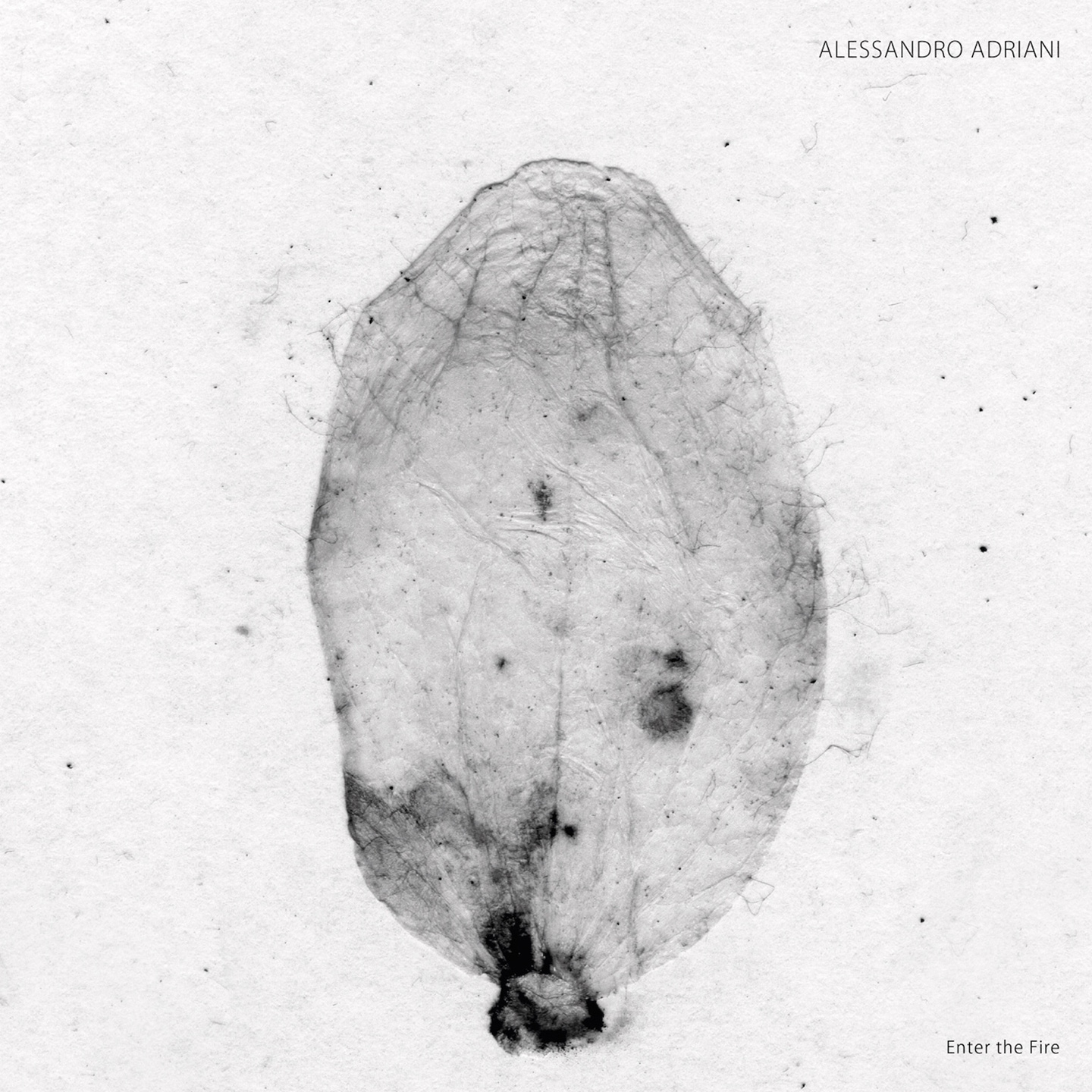 Alessandro Adriani - Enter The Fire