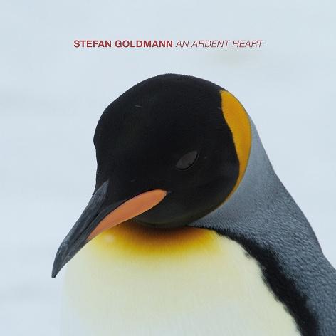 Ra Reviews Stefan Goldmann An Ardent Heart On Macro Single