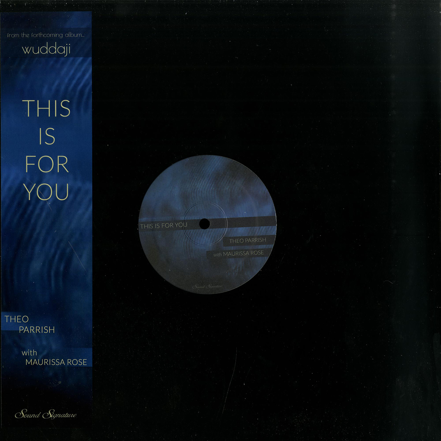 Theo Parrish - This Is For You feat. Maurissa Rose